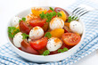 salad with mozzarella and colorful cherry tomatoes in a bowl