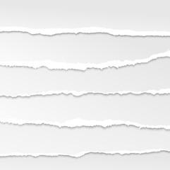 torn paper edges vector