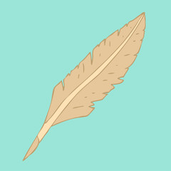 feather pen vector illustration, hand drawn