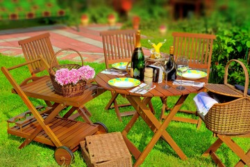 Summer Party or Picnic Scene