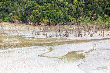 Aerial view from beach at low tide