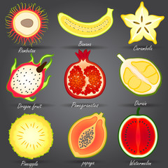 Collection of Fruits set vector,illustration