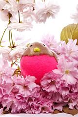 Vogel im Kirschblütenmeer