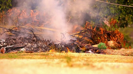 Dry twigs and leaves burn in the campfire. Video shift motion