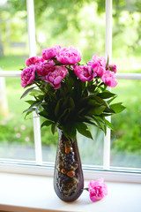 peony flowers on window-sill