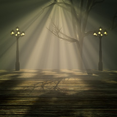 Light in the fog.