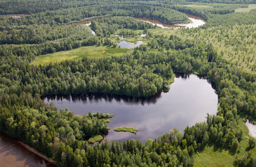 Forest lake, top view