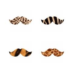Усы.леопард,зебра,тигр,жираф