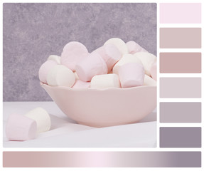 Heap Of Marshmallows In A Bowl. Palette With Complimentary Colou