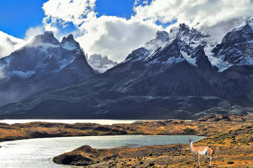 National Park Torres del Paine in Chile
