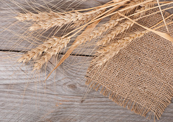 ripe ears of wheat on the old wooden background