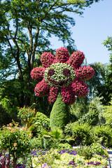 Die Riesenblume