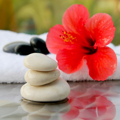 red Hibiscus flower with towel and zen  in spa