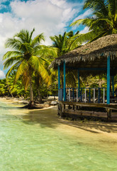 Exotic hut on a beach full of amazing palm trees