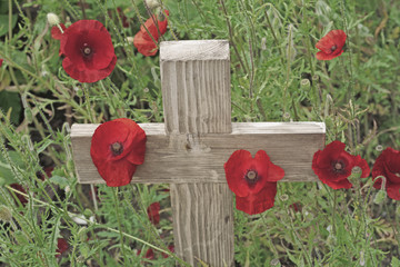 poppies cross
