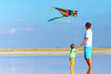 family playing with kite, summertime