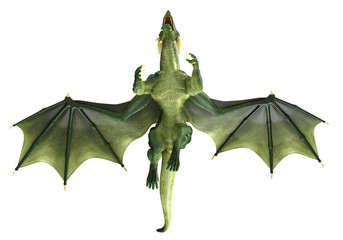 green dragon flying over