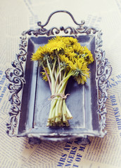 Dandelion on a tray with newspaper background