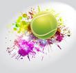 Tennis, competizione, torneo - 66691754