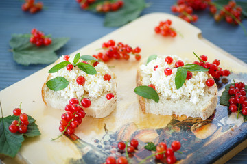 sandwich with cheese and red currants
