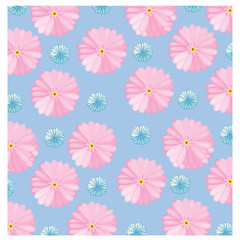 vector Gerbera colorful on the blue background
