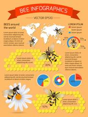 Bee infographics set