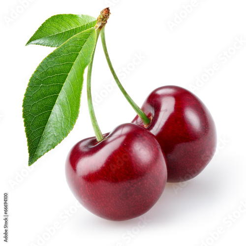 Cherry isolated on white background - 66694100