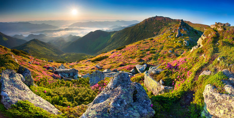 Colorful summer panorama of the mountains.