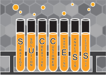 Experimenting elements of business success