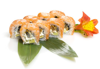 Philadelphia sushi roll isolated on white background