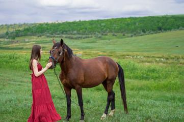 Girl feeds horse