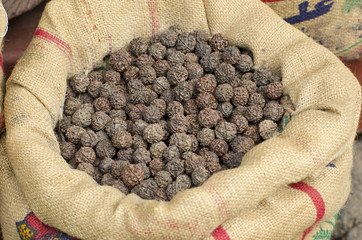 Rudraksha tree fruits nuts in sack, Asia market, India
