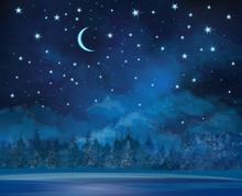 Vector night scena di inverno, il cielo e la foresta di sfondo.