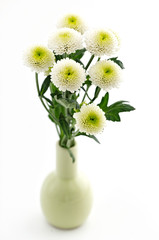 Bouquet of beautiful chrysanthemums isolated on white