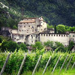 scenery of Italy - vineyards and castles ( Trento north)