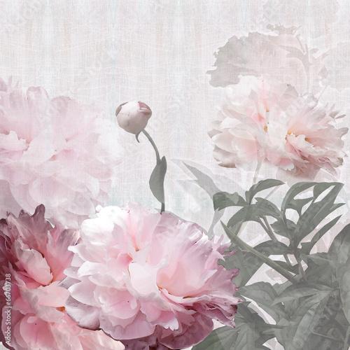 Obraz na Plexi floral design peonies