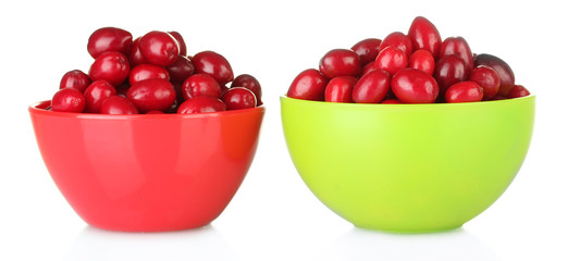 fresh cornel berries in colorful bowls isolated on white