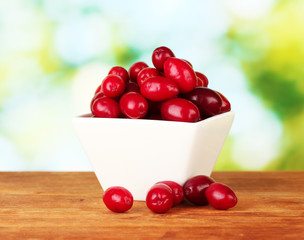 fresh cornel berries in white bowl on green background close-up