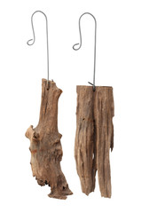 Old stump with hanging hook for orchid gardening