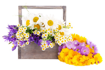 Beautiful flowers in crate isolated on white