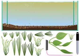 akwarium 100l z roślinkami