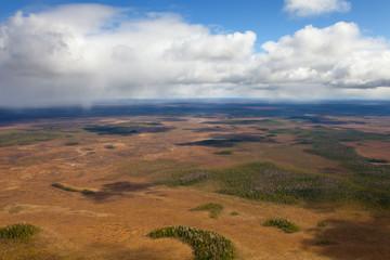 Moorland plain in autumn, top view