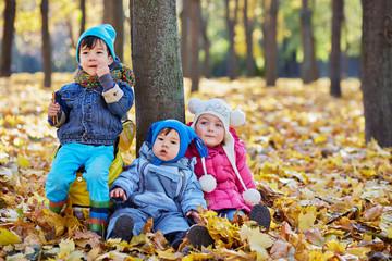 Three little children sits on ground on yellow fallen leaves
