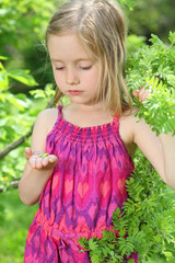 Little girl in pink is among greenery and looks at fresh buds