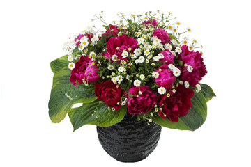 bouquet of peonies and  daisies isolated on white
