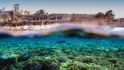 Split-Shot of Hotel Reef in Egypt