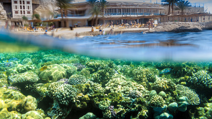 Over-Under Photo of Hotel Reef in Egypt