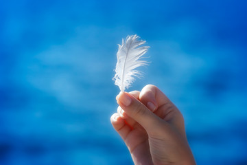 Feather in hand