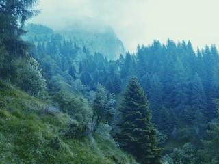 Neblige Berge in den Dolomiten