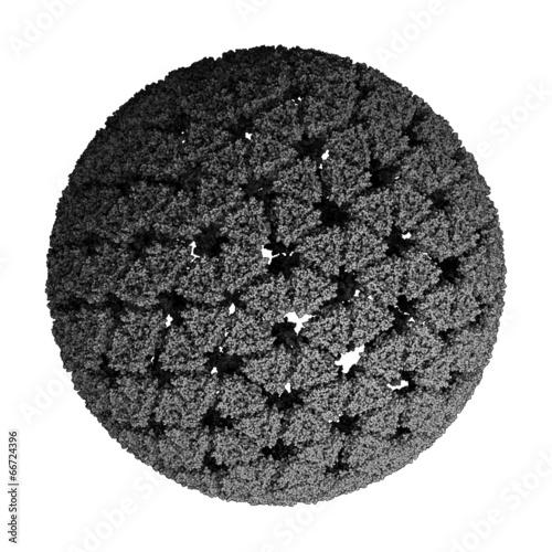 Rotavirus infectious particle. - 66724396
